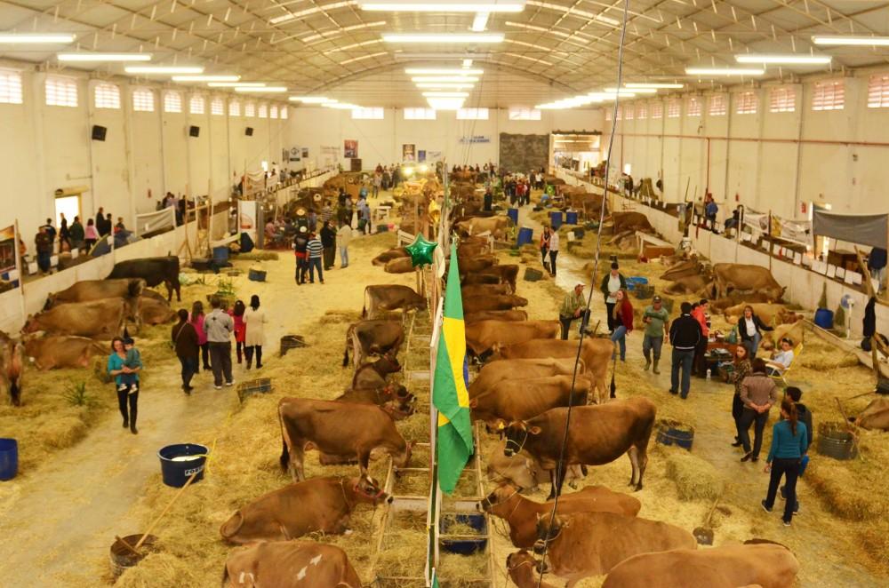 Foto: Divulgação/CCO Feagro