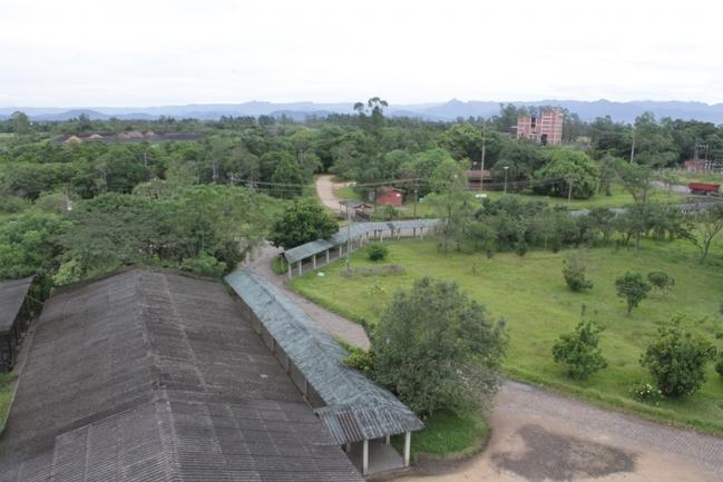 Foto: Arquivo A Tribuna
