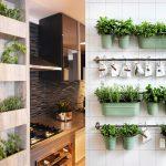 Cozinha decorada com temperos
