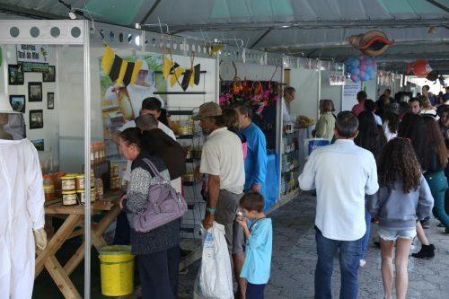 26ª Festa do Peixe Feira, Exposições e Gastronomia farta em Balneário Arroio do Silva