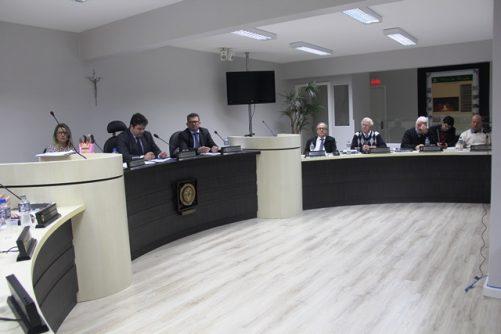 Alunos o CEI Regina Cecheto Spricigo visitam sessão da Câmara de Vereadores de Orleans