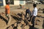 Inicia reassentamento de lajotas em Braço do Norte6
