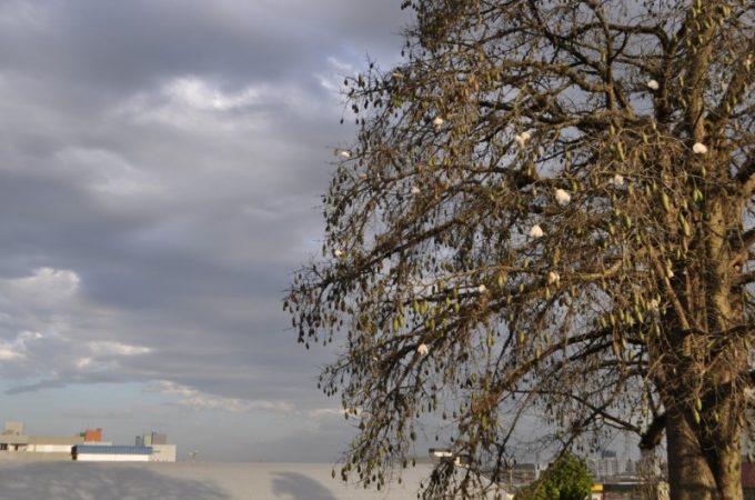 Mudança de vento sinaliza chegada do frio na região