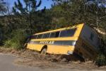 Ônibus escolar de Urussanga quebra barra da direção e fica pendura em árvores na SC-1086