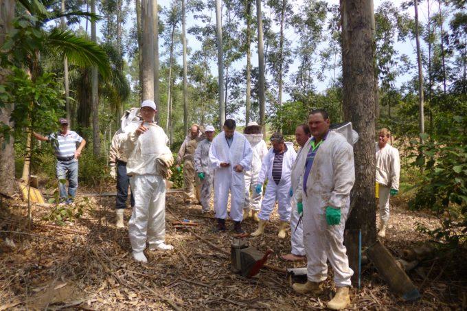 Apicultores de Orleans preparam colmeias para aumentar a produção de mel3