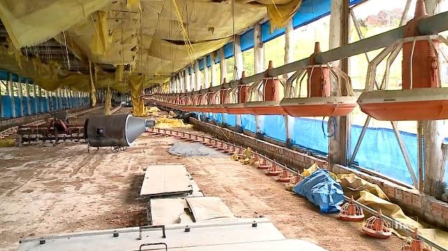 JBS fecha unidade em Morro Grande e ao menos 740 devem ser demitidos