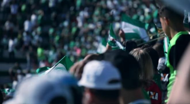 Homenagens marcam um ano da tragédia com a Chapecoense
