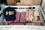 Mais de 200 quilos de produtos sem refrigeração são apreendidos na BR-101, em Araranguá2
