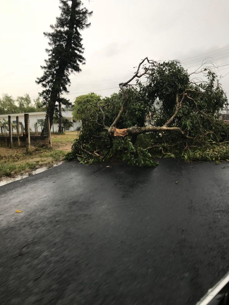 Tempestade deixa estragos pela região3