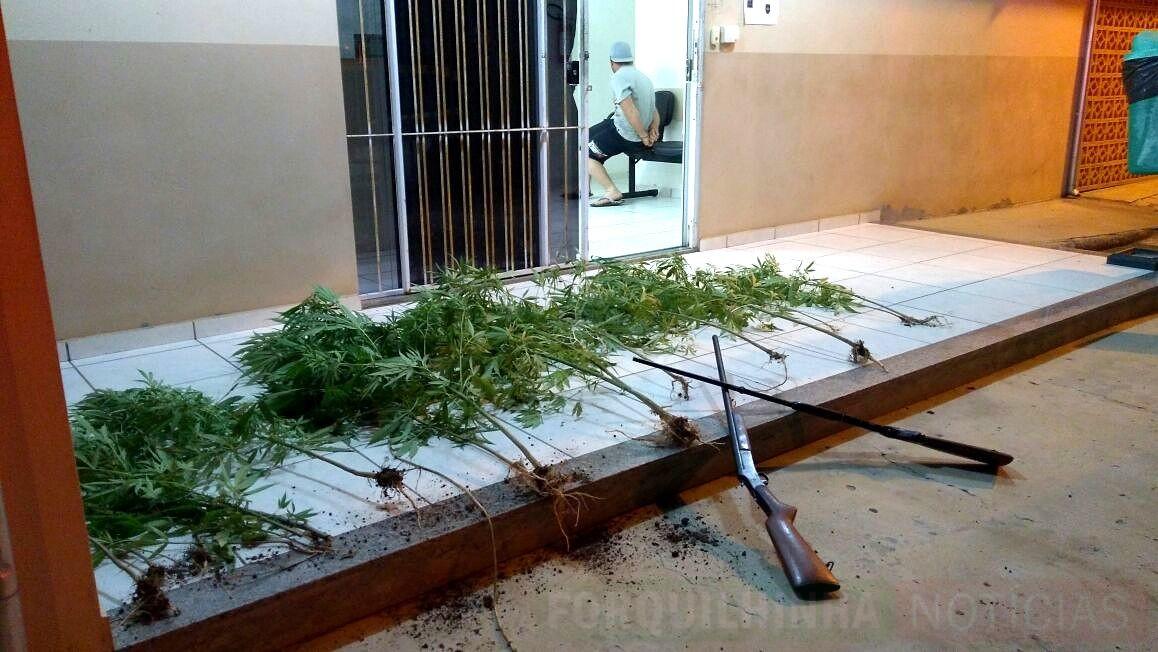 Jovem é flagrado com armas, carro furtado e plantação de maconha em Forquilhinha