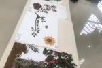 Exposicao Maria Brogni meio ambiente (5)