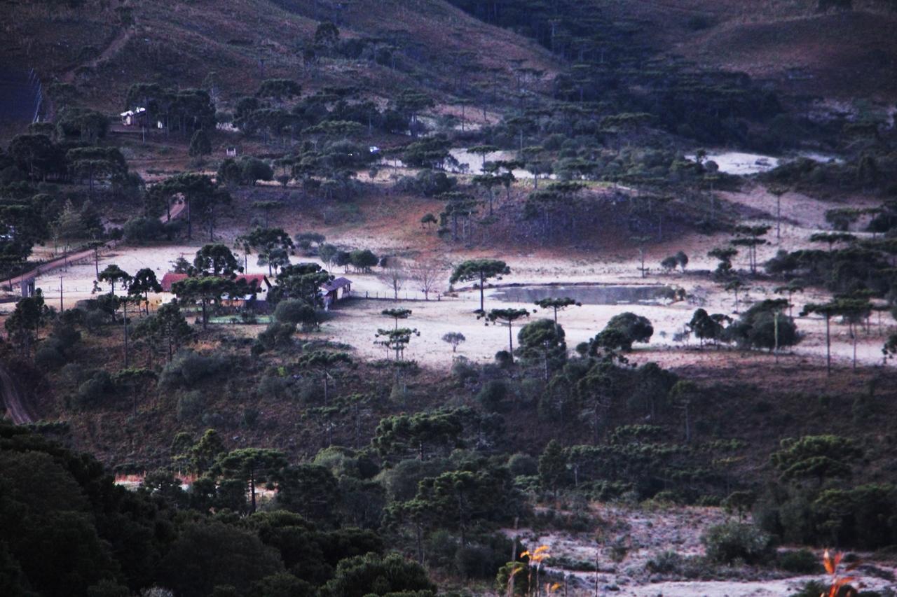 Geada São Joaquim (12)
